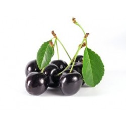 Black Cherry Incense