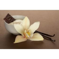 Warm Vanilla Sugar Incense